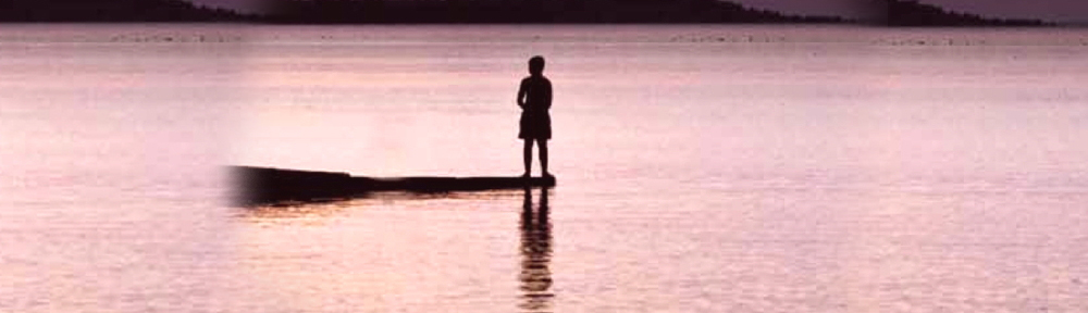 Don Schecter's Books